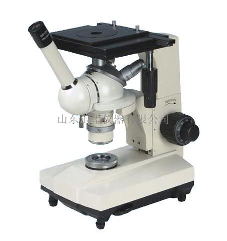 双目倒置金相显微镜